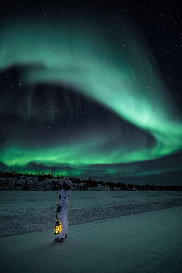 Wild Aurora Nights thumbnail