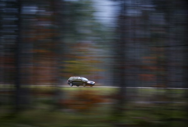 Panning in the forest thumbnail