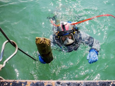 Underwater archaeologists recovered 30 wooden poles used  as supports for prehistoric pile dwellings.