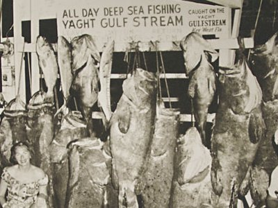 1957: A half century ago, tourists in Key West routinely caught goliath grouper (the big fish with the big mouths) and large sharks (on the dock).