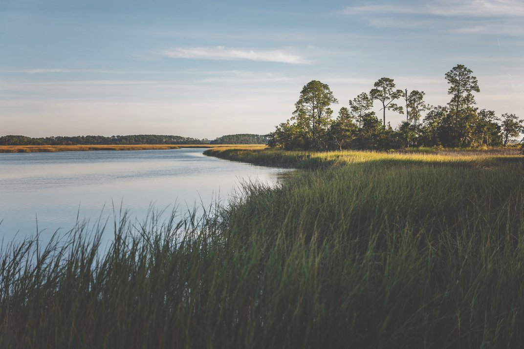 Discover a Perfect Paradox in the South Carolina Lowcountry