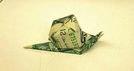 snail-dollar.jpg