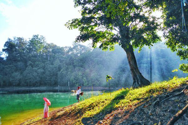 Morning in Lake Pedu, Malaysia. thumbnail
