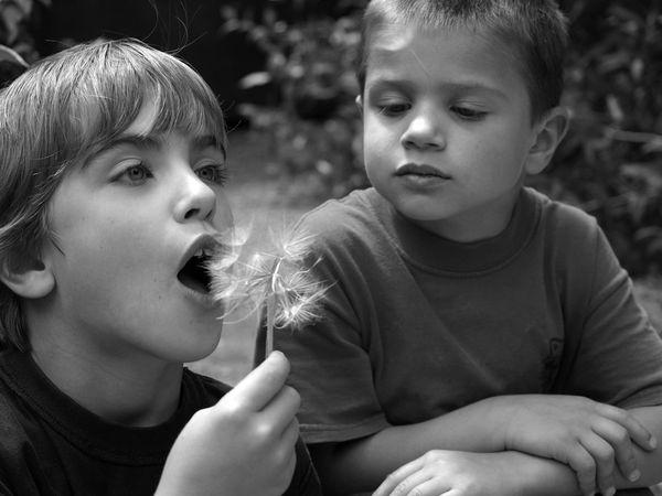 Brothers making a wish. thumbnail