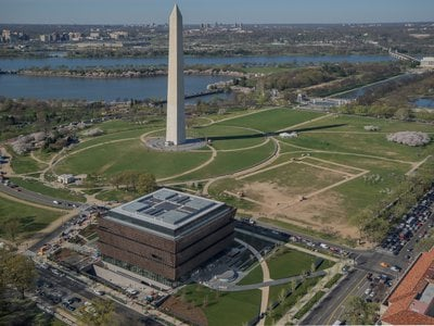 The museum's situation on the National Mall gives it access to ample water and sunlight.
