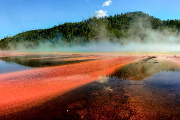 Steam rising above the Grand Prismatic Spring thumbnail