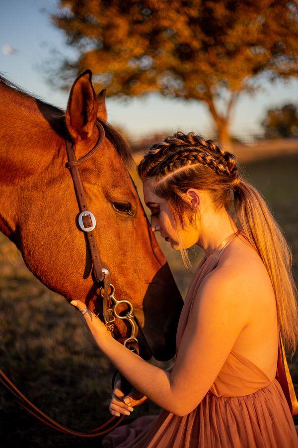 A Viking & Her Horse thumbnail