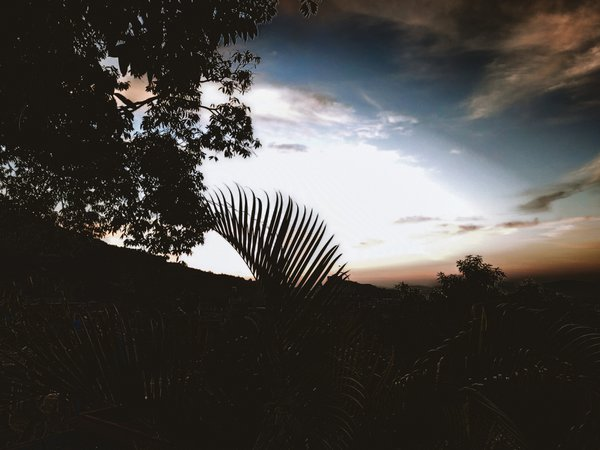 Sun peeking to the world at daybreak thumbnail