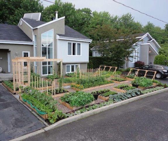 The offending garden in Drummondville