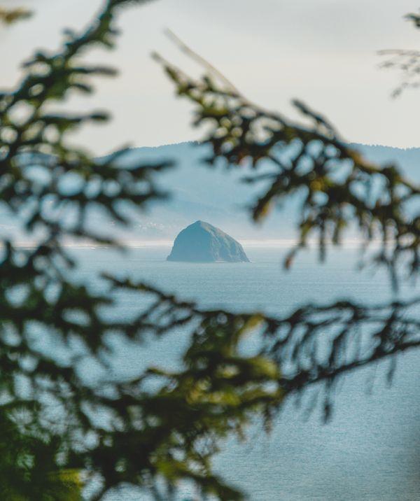 Views along the Oregon Coast thumbnail