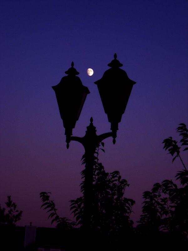 Street Light and the Moon thumbnail