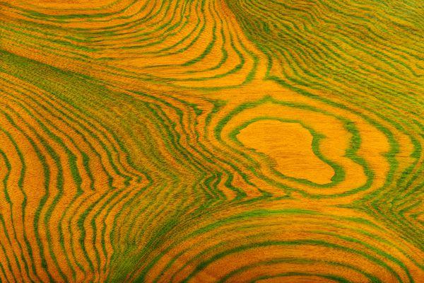 Beauty of Nature: Terraces thumbnail