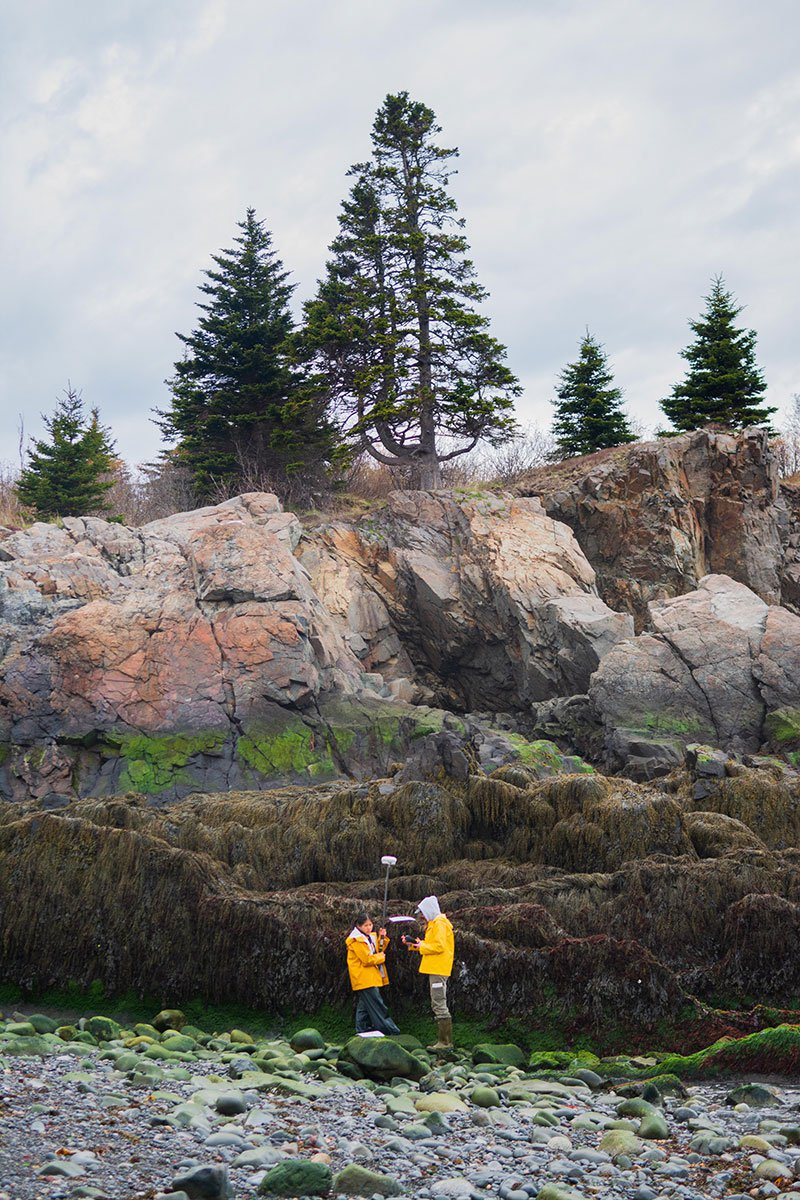 A Photographer Documents the Effects of Climate Change on Maine's Intertidal Zones