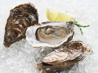 Though threatened by adverse conditions in the Chesapeake Bay, oysters are filter feeders and may provide a much-needed solution for better water quality.