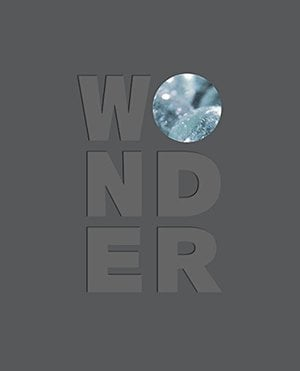 Preview thumbnail for video 'Wonder