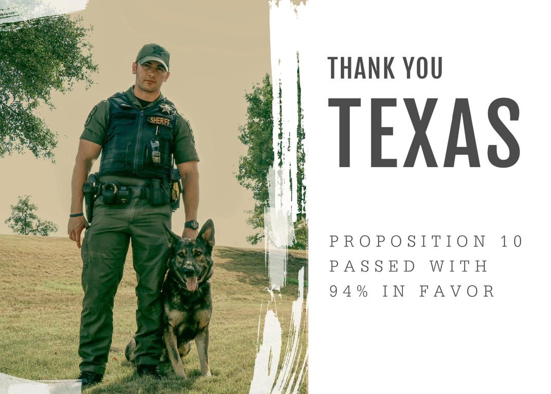 Texas' Retired Police Dogs No Longer Have to Be Sold or Euthanized