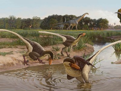 Reconstruction of Dineobellator notohesperus and other dinosaurs from the Ojo Alamo Formation at the end of the Cretaceous Period in New Mexico by Sergey Krasovskiy. This reconstruction shows three Dineobellator near a water source, with the ceratopsid Ojoceratops and  sauropod Alamosaurus in the background.