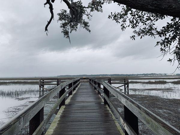 Boardwalk lake view thumbnail