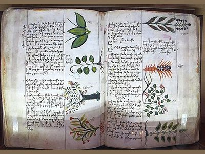 A page from fifteenth century Armenian physician Amirdovlat Amasiatsi's botanical encyclopedia, Useless for the Ignorant, housed in Matanadaran.