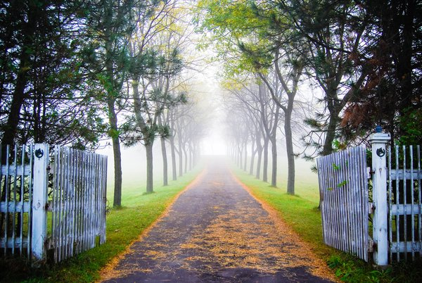 Gated entrance driveway on a foggy autumn morning thumbnail