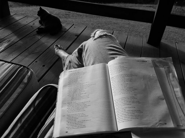 Reading a Bible on the porch thumbnail