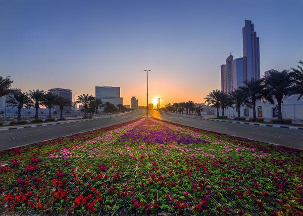 An exotic sunrise in a urban landscape. thumbnail
