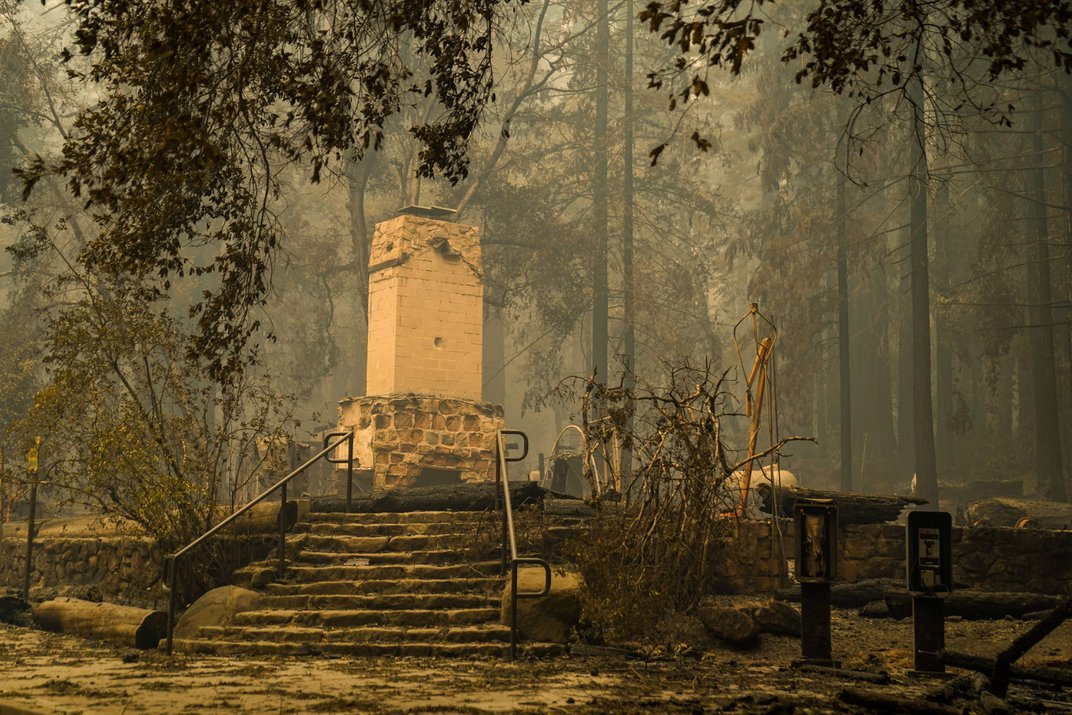 Wildfire Burns California's Oldest State Park—but Most Redwoods Should Recover Soon