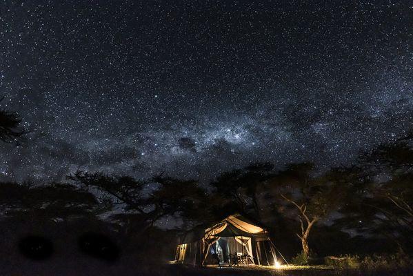 Milky Way over the Serengeti thumbnail