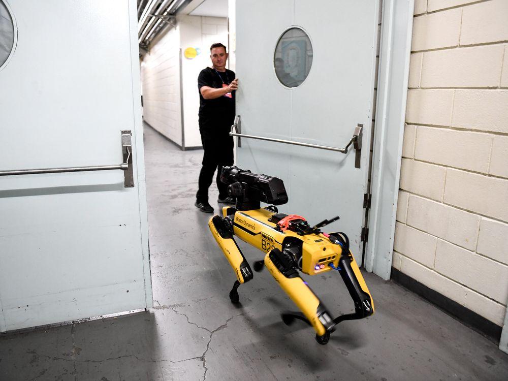 Boston Dynamics' robot Spot