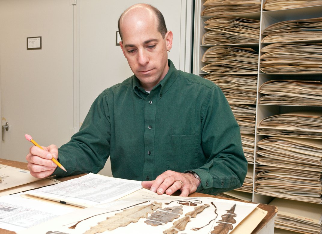 Person doing research in museum storage cases