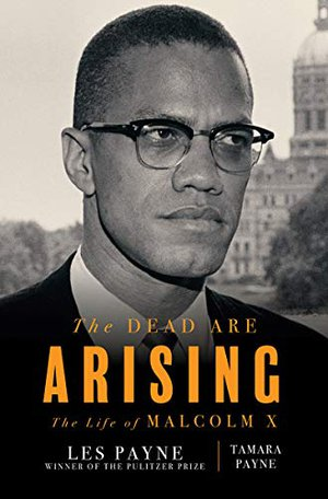Preview thumbnail for 'The Dead Are Arising: The Life of Malcolm X