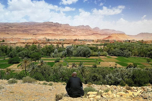 Moroccan man staring the valley Dades thumbnail