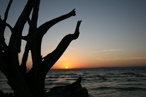 Sunrise on Sanibel Island thumbnail