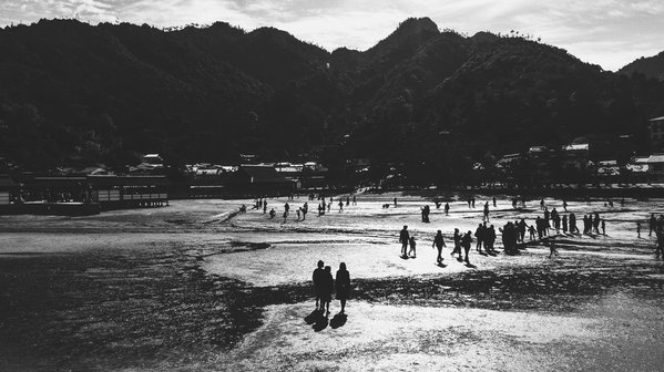 low tide on Miyajima  thumbnail