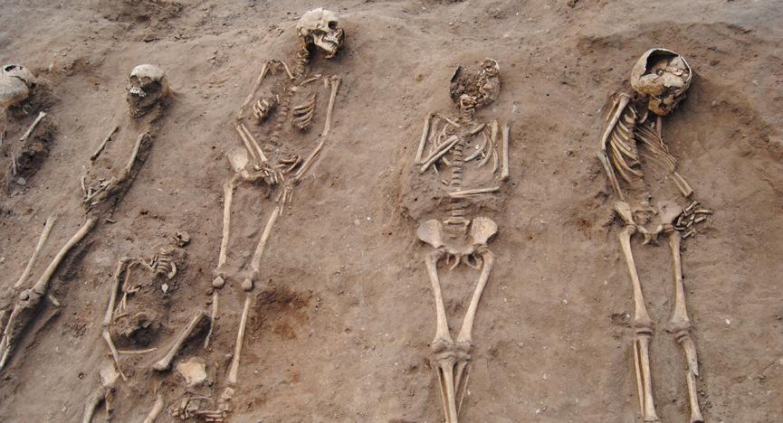 Black Plague victims' bones