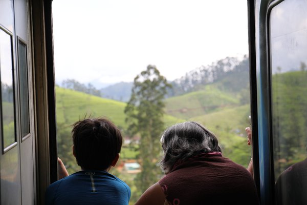 grandmother and grandson on the train thumbnail