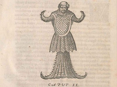 A rare book depicting the sea monk by Guillaume Rondelet (1507-1566) in the Smithsonian Libraries dates to 1554.