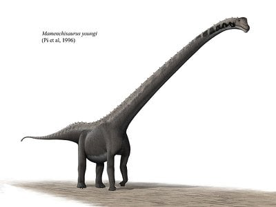 Mamenchisaurus, one of the longest-necked dinosaurs of all time, perfectly represents the bizarre nature of sauropods.
