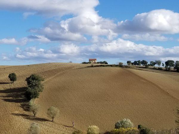 Le Marche landscape outside of Corinaldo,  Italy thumbnail