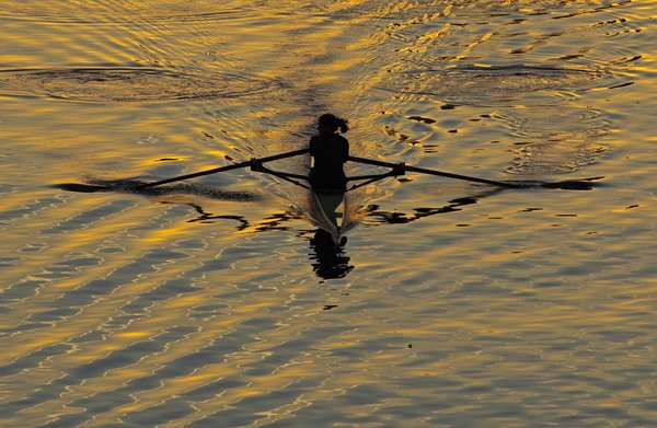 Woman in silhouette rowing in the early morning thumbnail