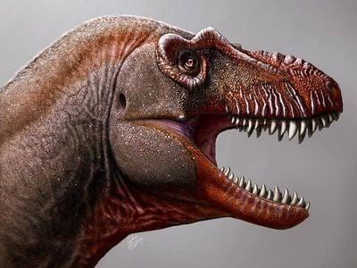 The new dinosaur is called Thanatotheristes degrootorum.