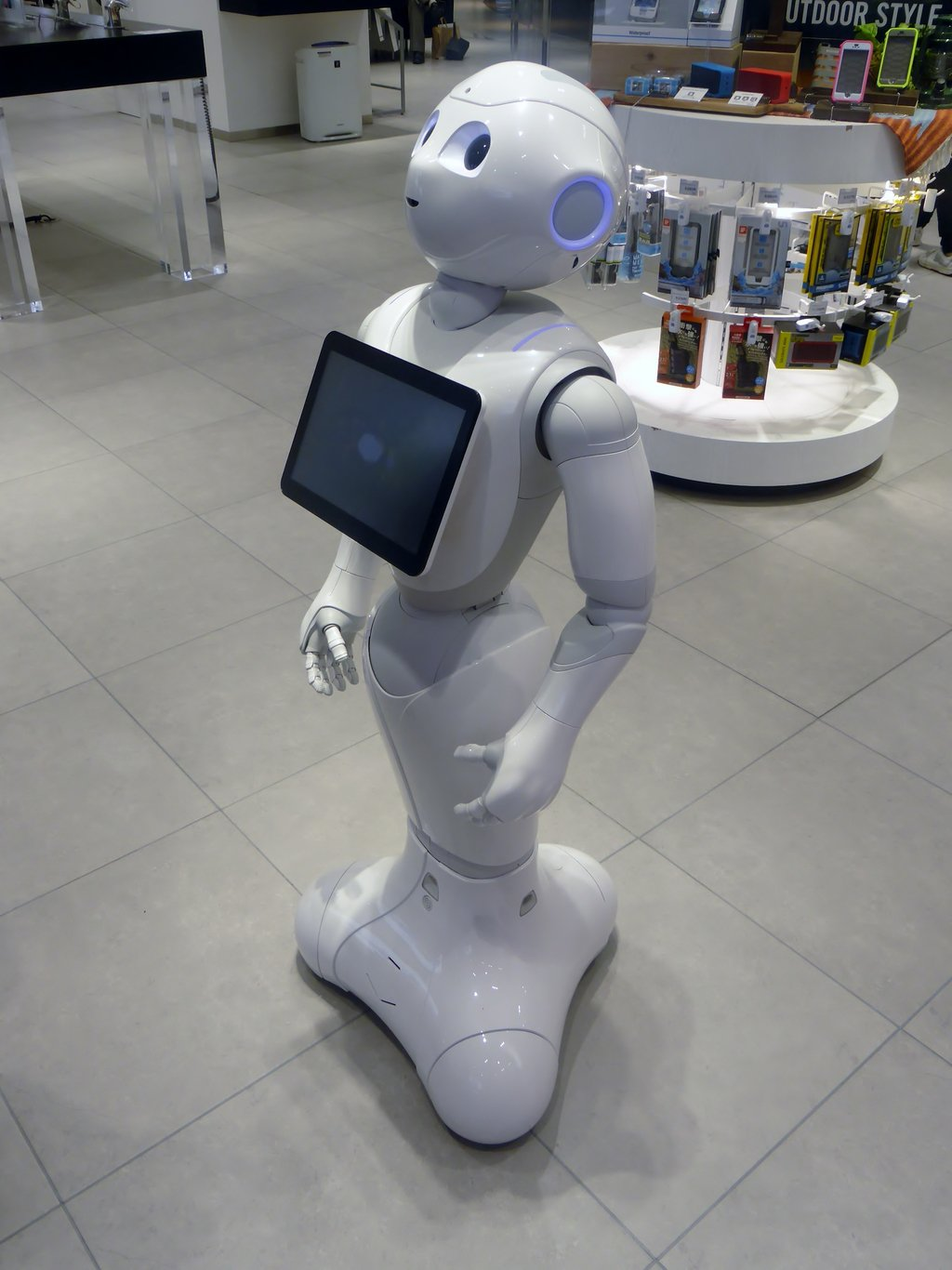 How Robots Could Help the Elderly Age in Their Homes