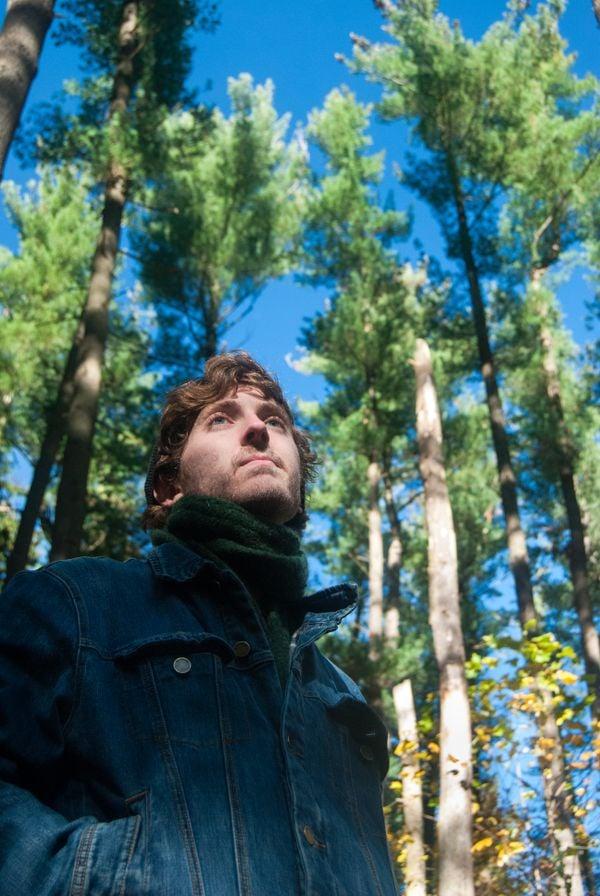 The Trees thumbnail