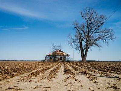 A dry farm field.