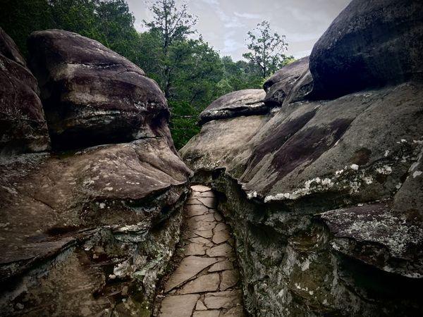 Narrow Path thumbnail