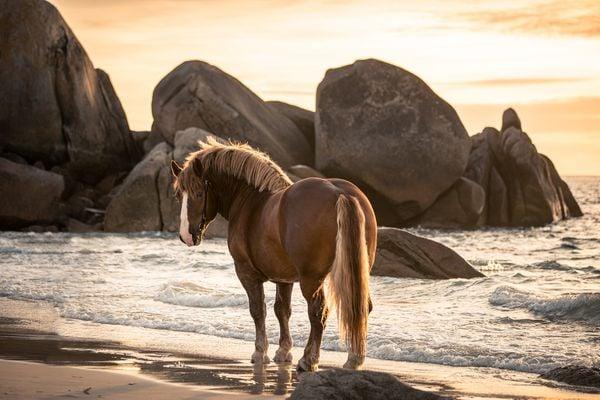 Breton Rocks thumbnail