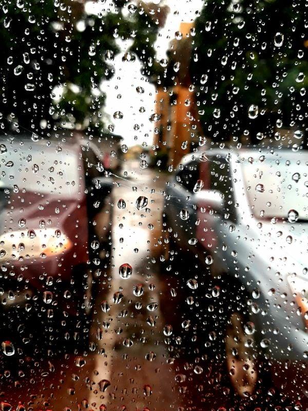 Droplets in rainy days  thumbnail