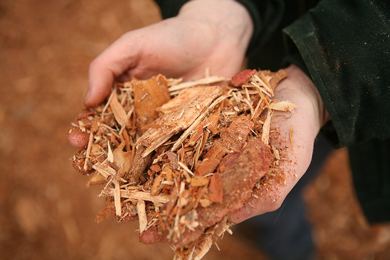 Hands-holding-wood-byproducts.jpg