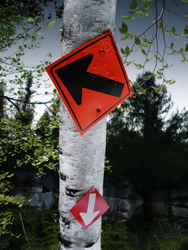 Trail Signs thumbnail