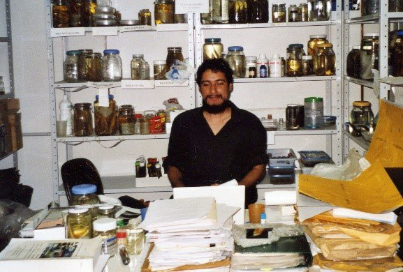 David de Santana surrounded by jars of preserved fishes in a laboratory at the Instituto Nacional de Pesquisas da Amazônia.